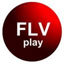 FLVPlay